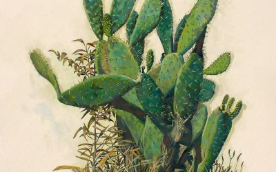 Prickly Pear Cactus, Greenside by Dorothy Clark